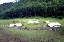 isenthal1990-001
